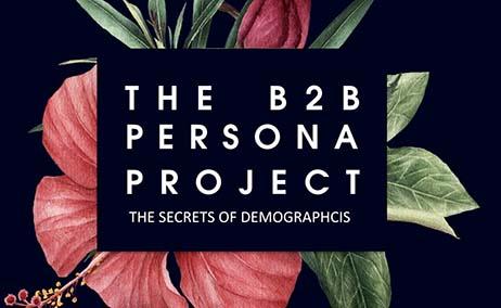 Projeto Persona B2B – Responder à pergunta de 7,5 milhões de dólares